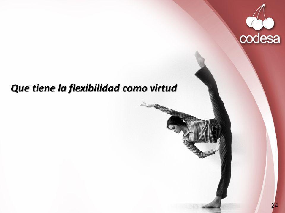 Que tiene la flexibilidad como virtud