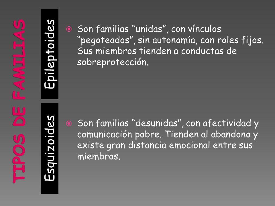 TIPOS DE FAMILIAS Epileptoides Esquizoides