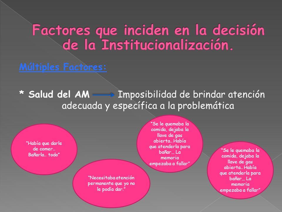 Factores que inciden en la decisión de la Institucionalización.