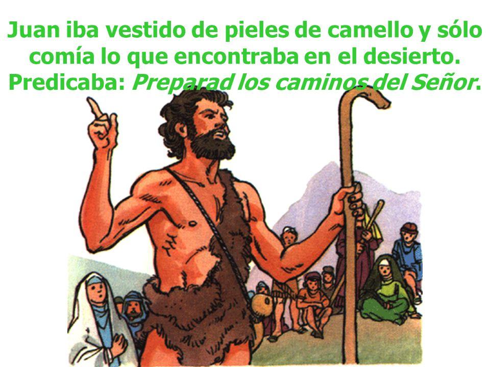 Juan iba vestido de pieles de camello y sólo comía lo que encontraba en el desierto.