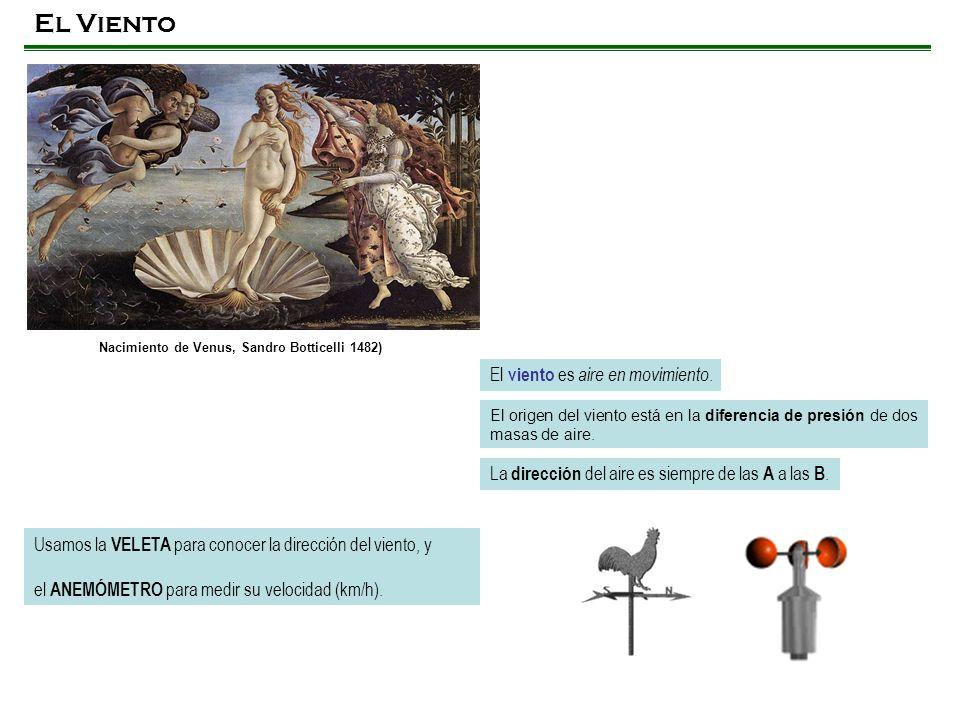 Nacimiento de Venus, Sandro Botticelli 1482)