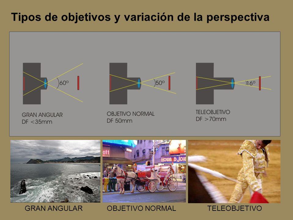 Tipos de objetivos y variación de la perspectiva