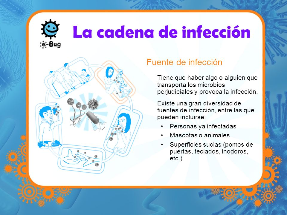 La cadena de infección Fuente de infección