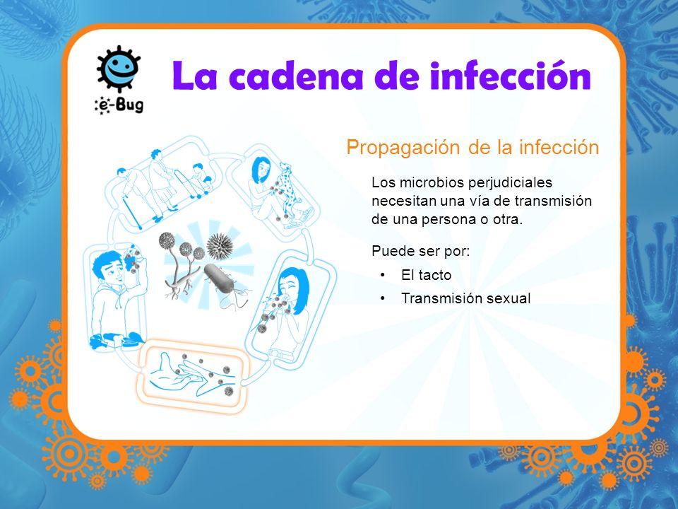 La cadena de infección Propagación de la infección
