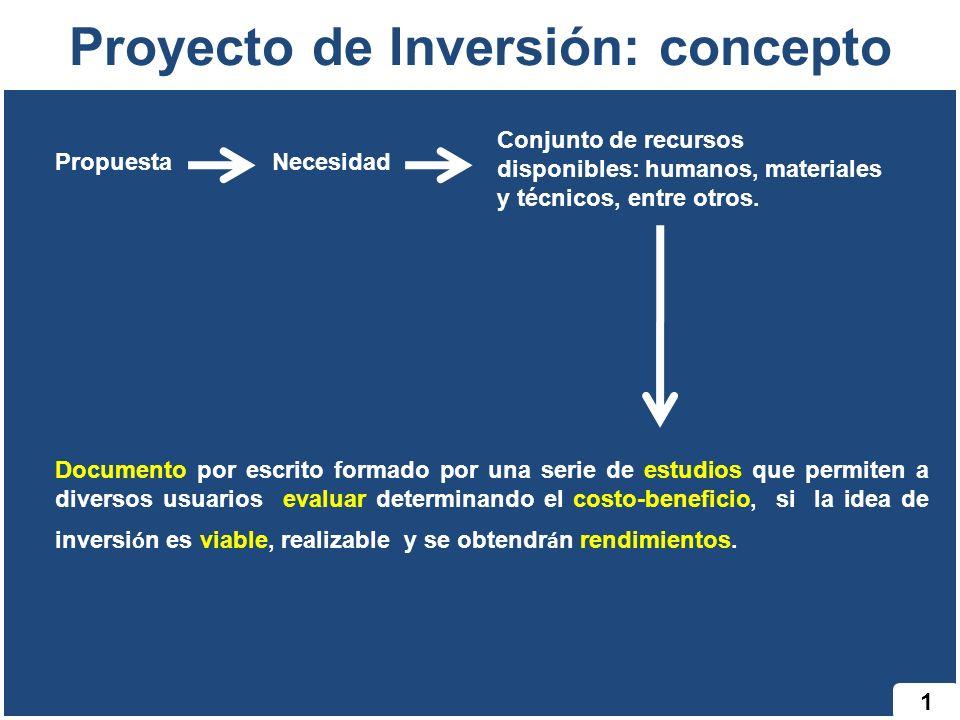 Proyecto de Inversión: concepto