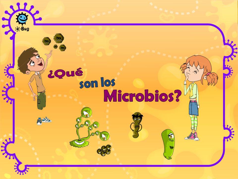 ¿Qué son los Microbios