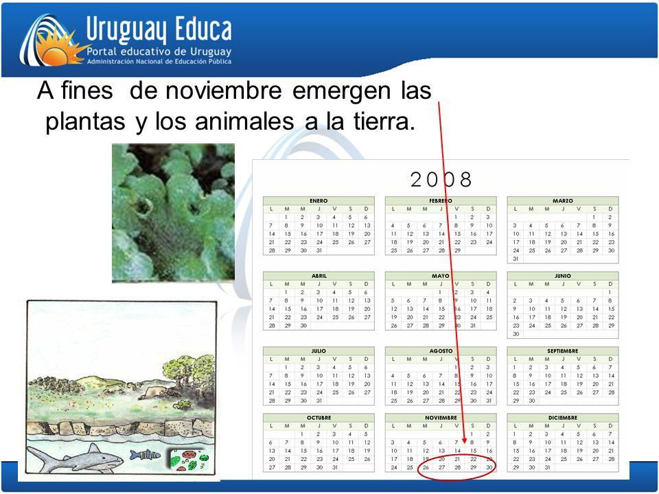 A fines de noviembre emergen las plantas y los animales a la tierra.