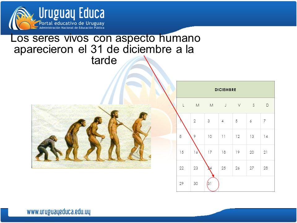 Los seres vivos con aspecto humano aparecieron el 31 de diciembre a la tarde