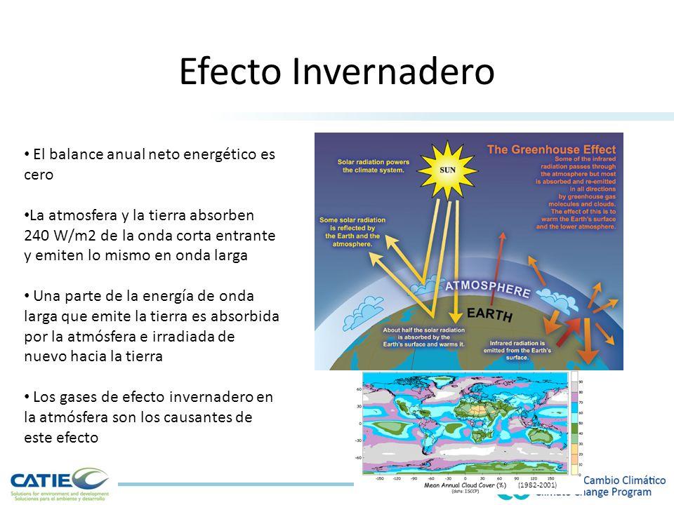 Efecto Invernadero El balance anual neto energético es cero