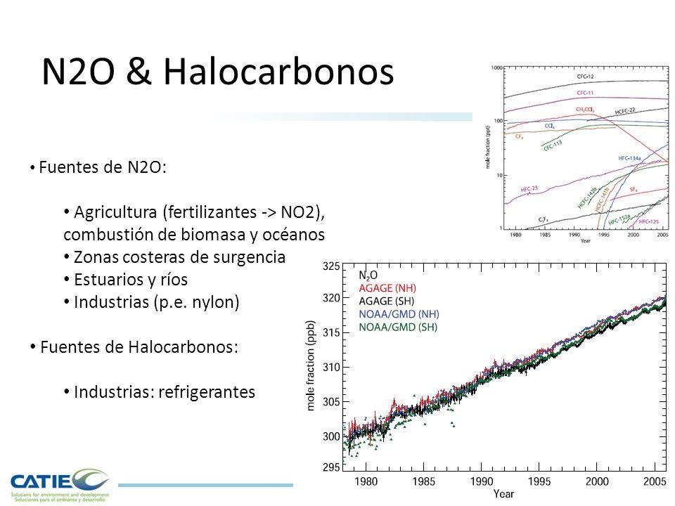 N2O & Halocarbonos Fuentes de N2O: Agricultura (fertilizantes -> NO2), combustión de biomasa y océanos.