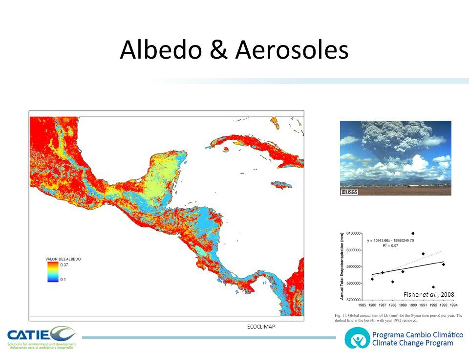 Albedo & Aerosoles Fisher et al., 2008 ECOCLIMAP