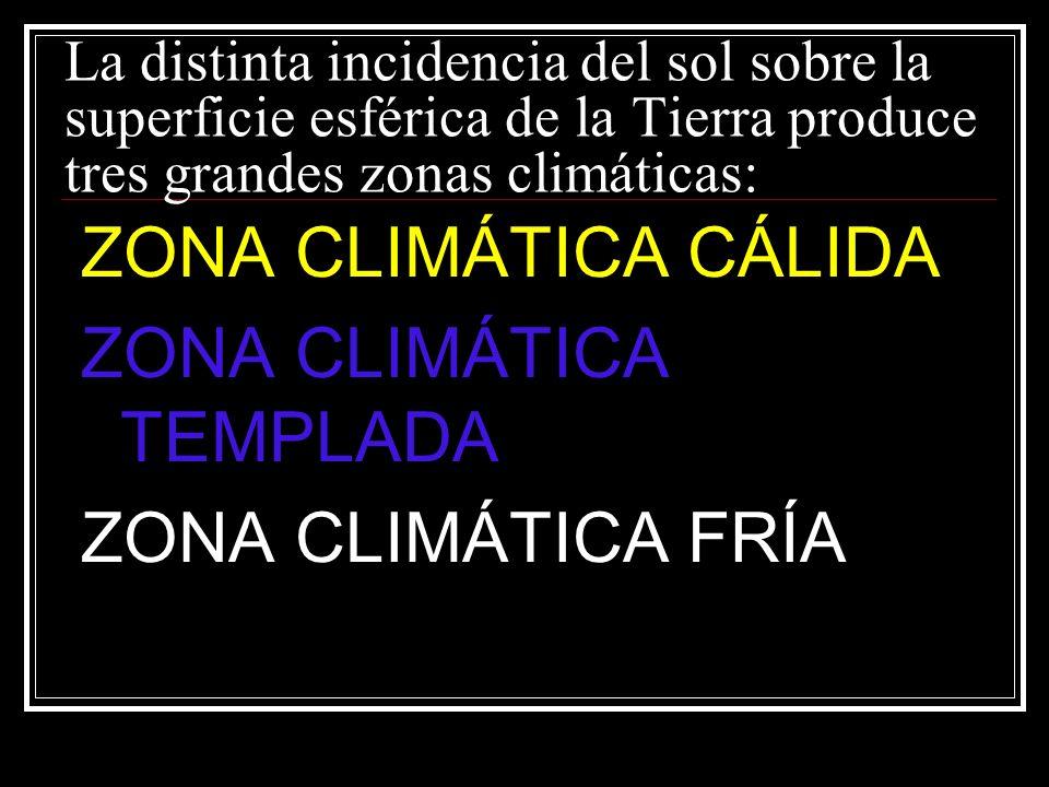 ZONA CLIMÁTICA TEMPLADA ZONA CLIMÁTICA FRÍA