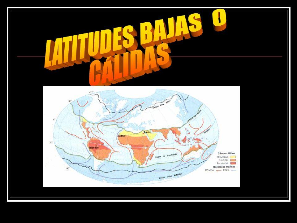 LATITUDES BAJAS O CÁLIDAS