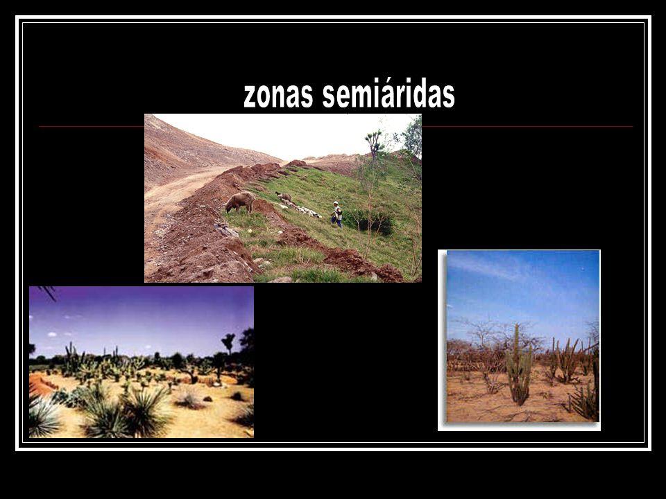 zonas semiáridas