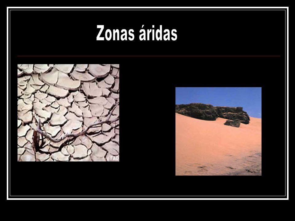 Zonas áridas