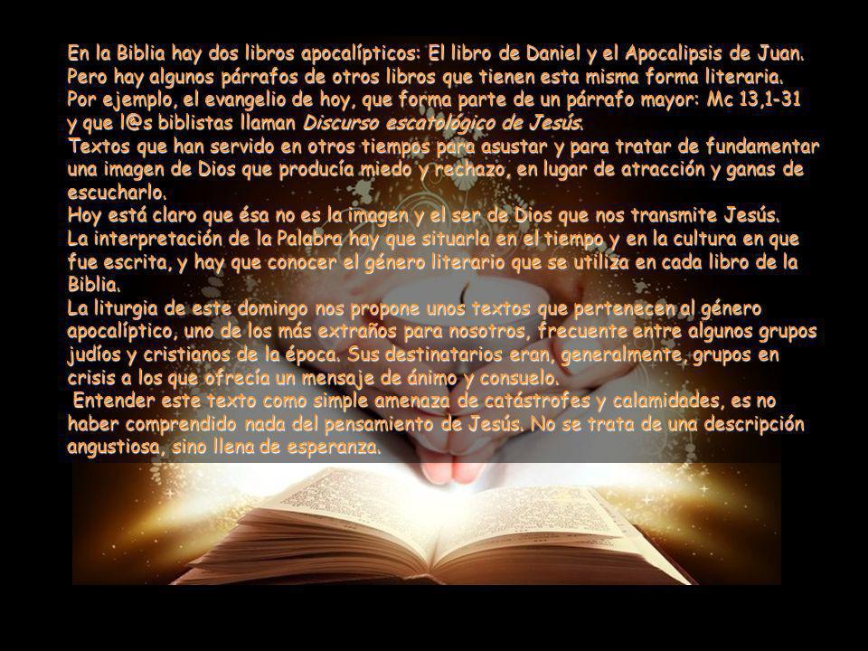 En la Biblia hay dos libros apocalípticos: El libro de Daniel y el Apocalipsis de Juan. Pero hay algunos párrafos de otros libros que tienen esta misma forma literaria.
