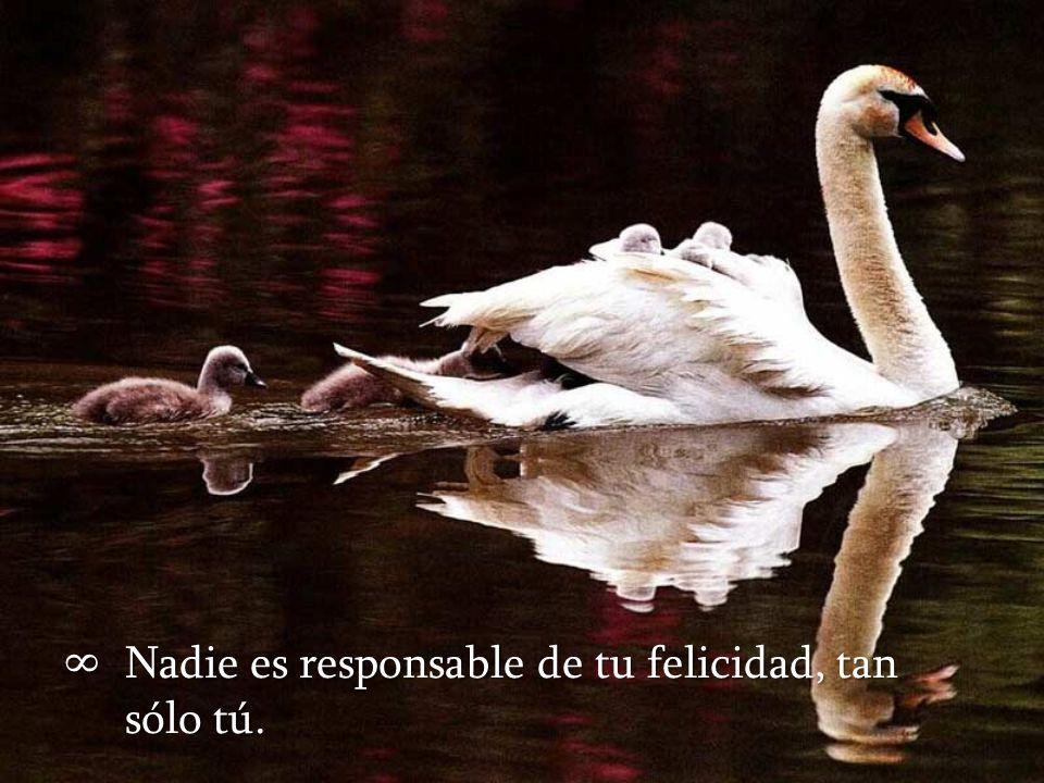 Nadie es responsable de tu felicidad, tan sólo tú.