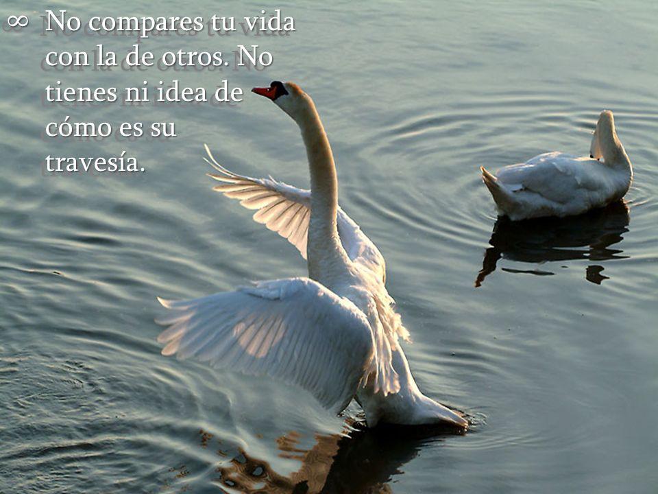 No compares tu vida con la de otros