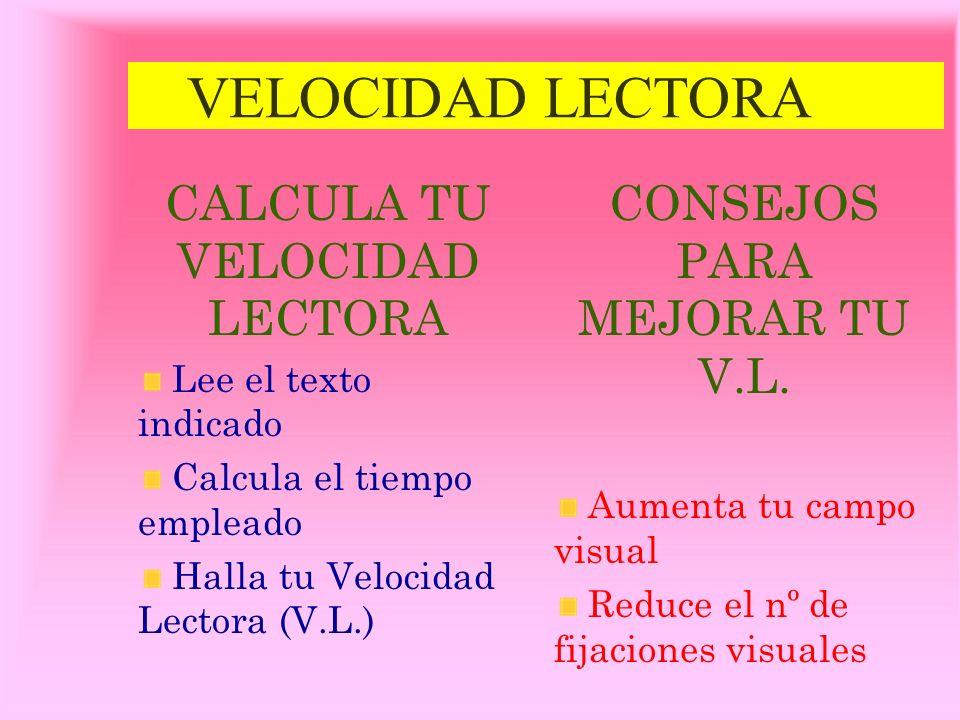 VELOCIDAD LECTORA CALCULA TU VELOCIDAD LECTORA