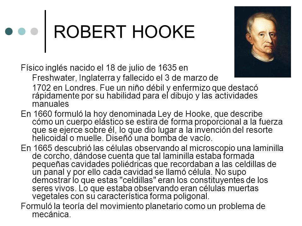 ROBERT HOOKE Físico inglés nacido el 18 de julio de 1635 en