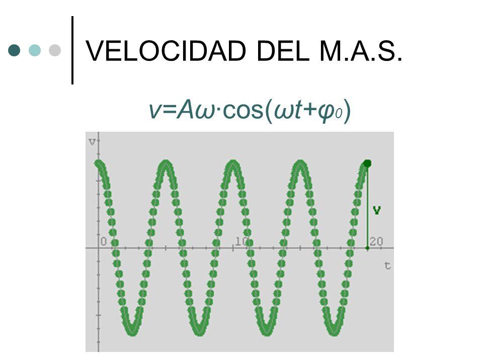 VELOCIDAD DEL M.A.S. v=Aω·cos(ωt+φ0)