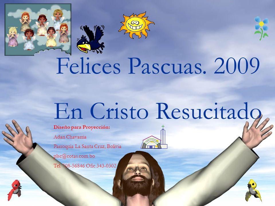 Felices Pascuas. 2009 En Cristo Resucitado Diseño para Proyección: