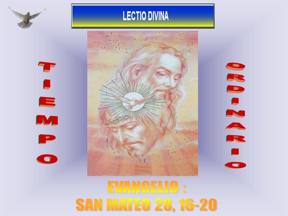 TIEMPO ORDINARIO EVANGELIO : SAN MATEO 28, 16-20 1