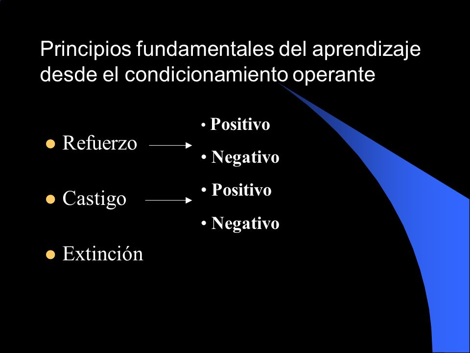 Principios fundamentales del aprendizaje desde el condicionamiento operante
