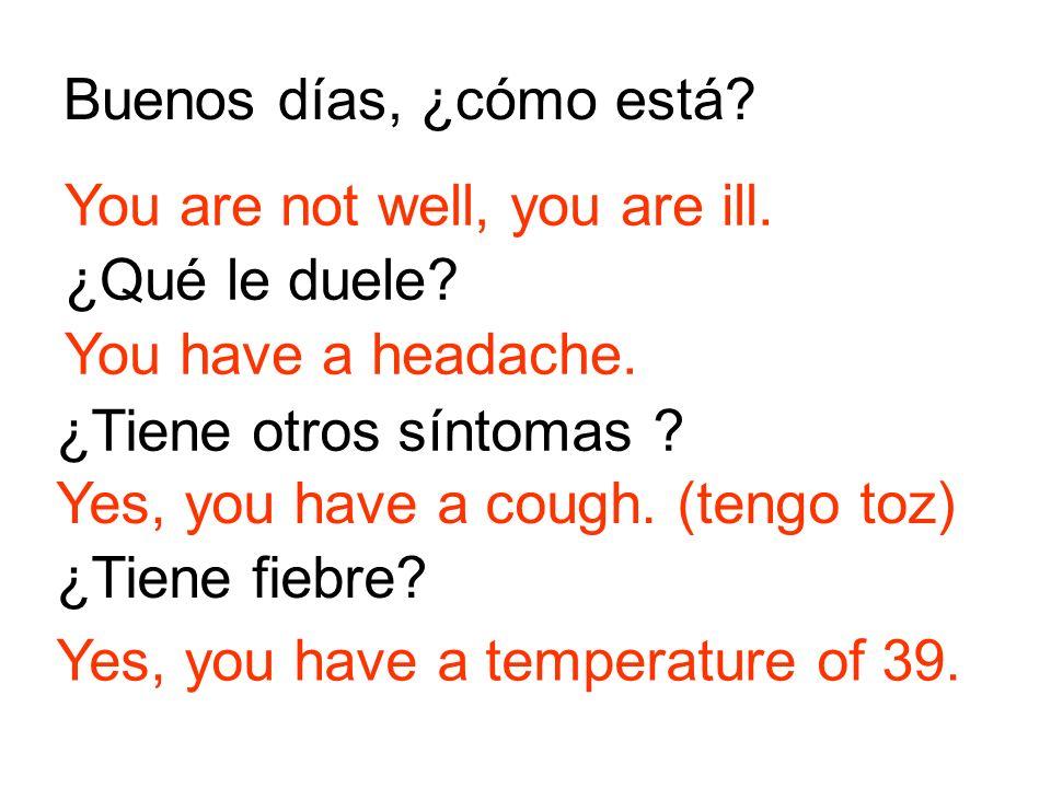 Buenos días, ¿cómo está You are not well, you are ill. ¿Qué le duele You have a headache. ¿Tiene otros síntomas