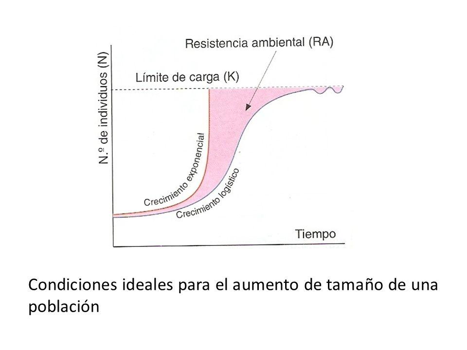Condiciones ideales para el aumento de tamaño de una población