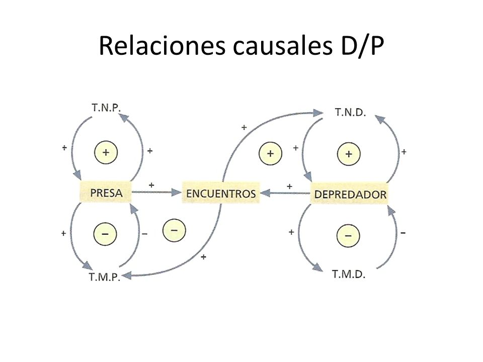 Relaciones causales D/P