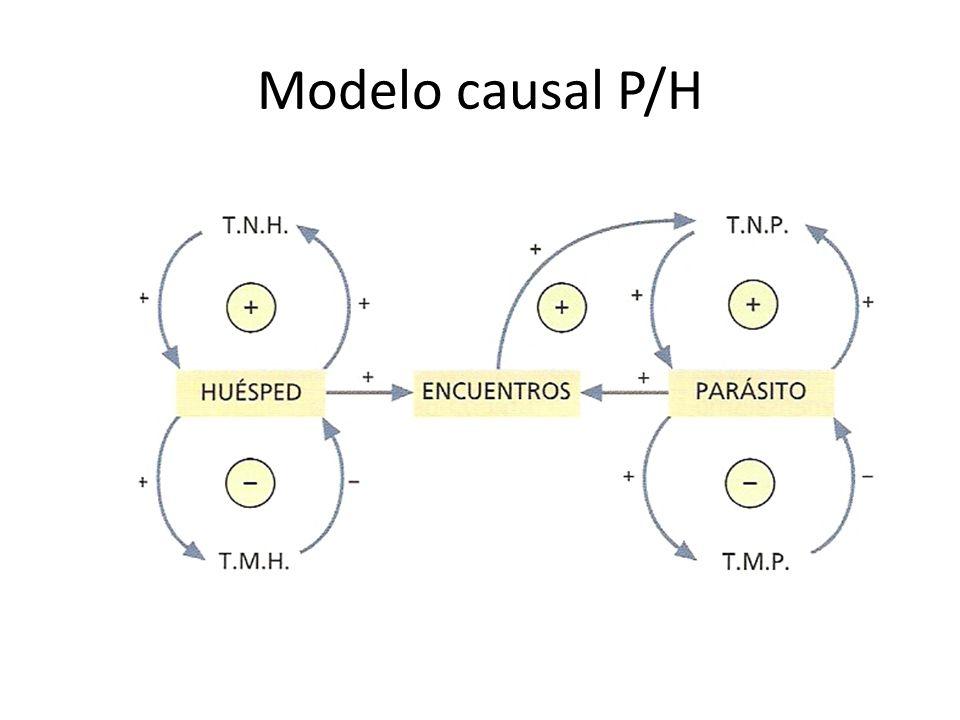 Modelo causal P/H