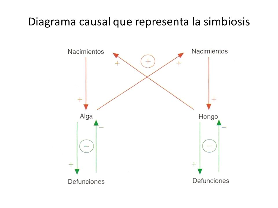 Diagrama causal que representa la simbiosis