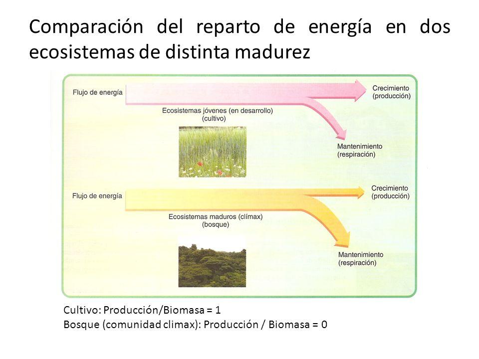 Comparación del reparto de energía en dos ecosistemas de distinta madurez
