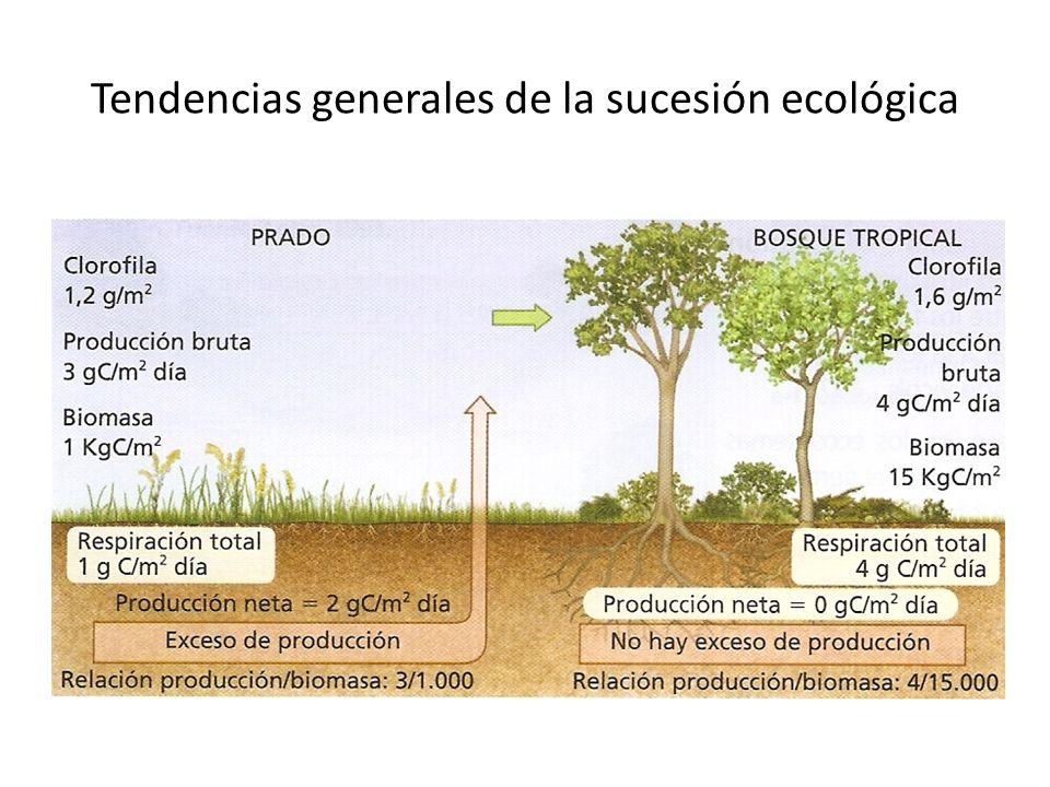 Tendencias generales de la sucesión ecológica