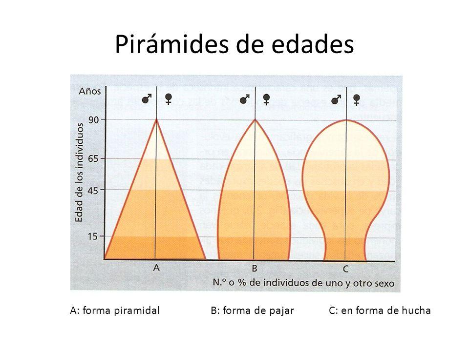 Pirámides de edades A: forma piramidal B: forma de pajar C: en forma de hucha