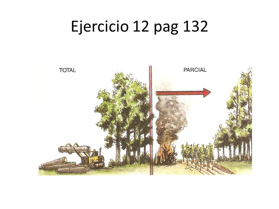 Ejercicio 12 pag 132