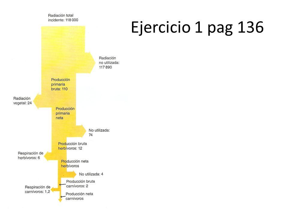 Ejercicio 1 pag 136
