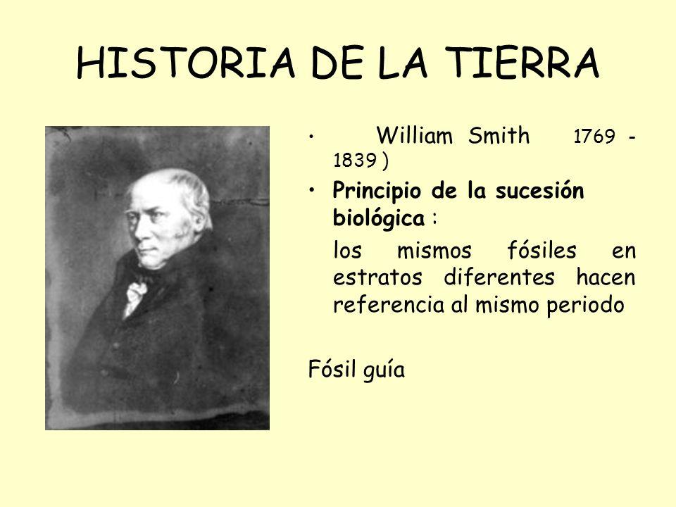 HISTORIA DE LA TIERRA Principio de la sucesión biológica :