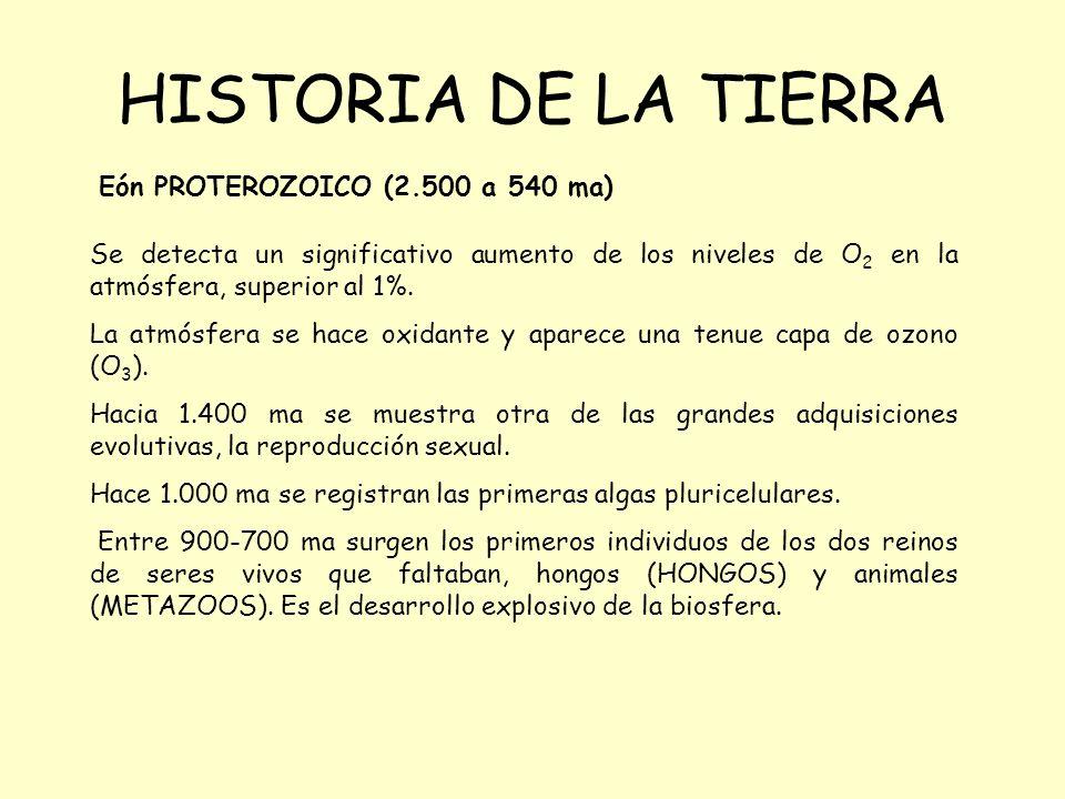 HISTORIA DE LA TIERRA Eón PROTEROZOICO (2.500 a 540 ma)