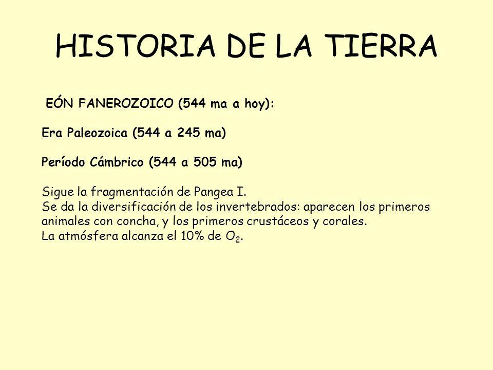 HISTORIA DE LA TIERRA EÓN FANEROZOICO (544 ma a hoy):
