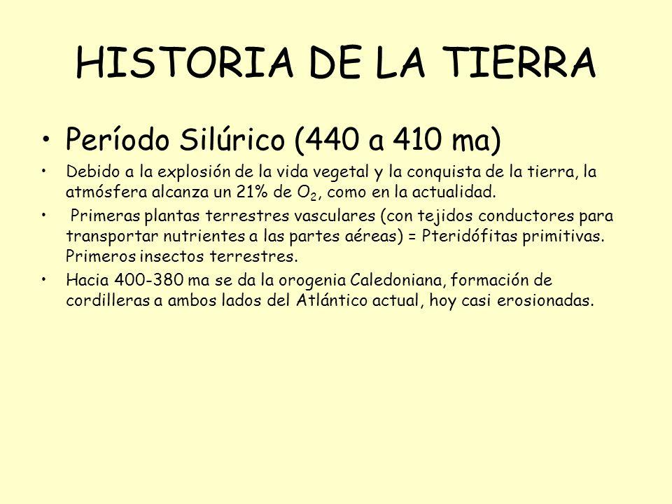 HISTORIA DE LA TIERRA Período Silúrico (440 a 410 ma)