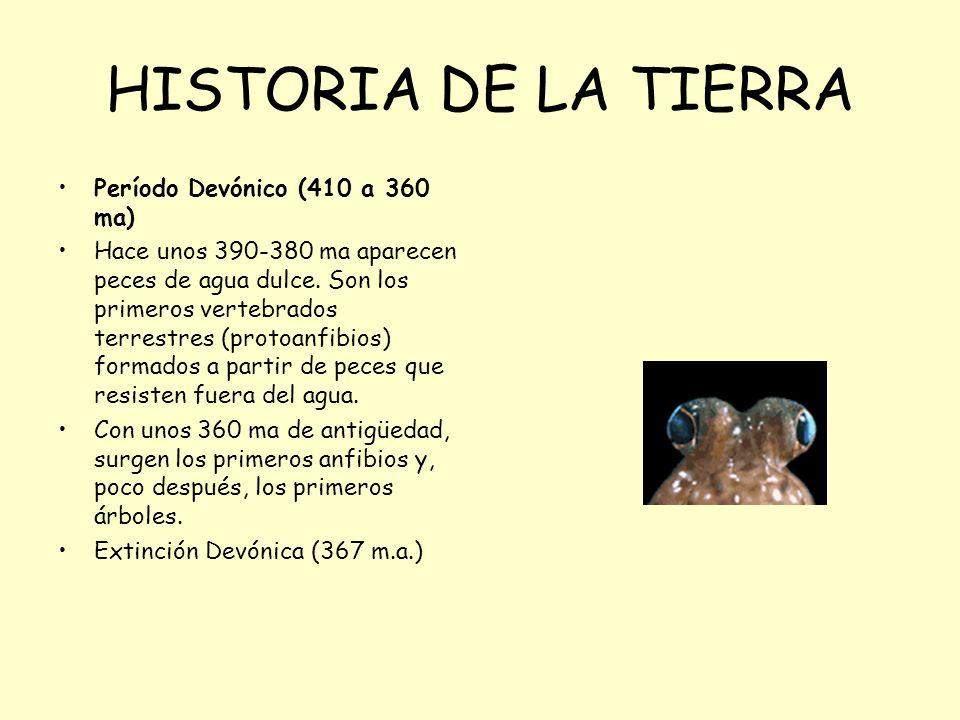 HISTORIA DE LA TIERRA Período Devónico (410 a 360 ma)