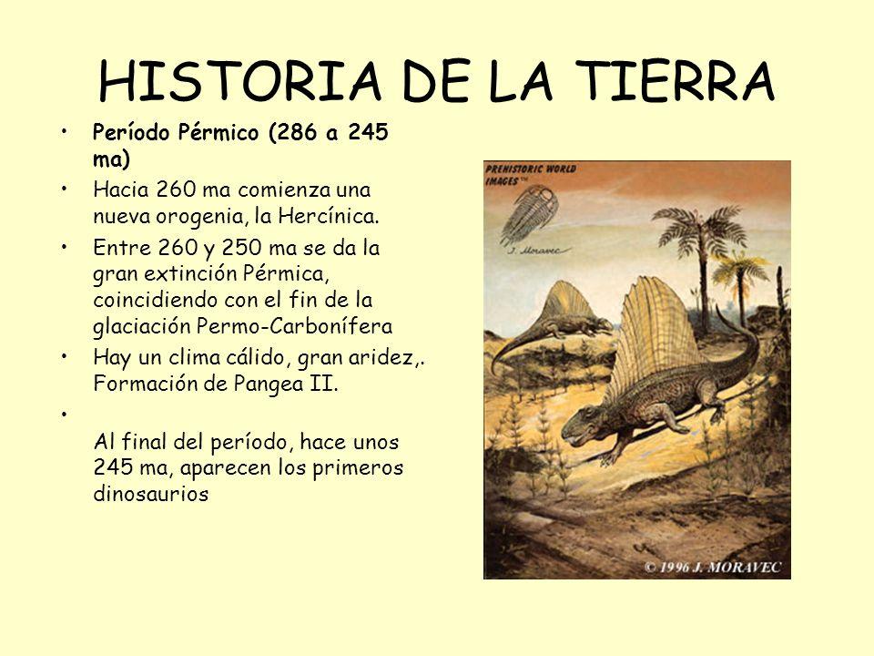 HISTORIA DE LA TIERRA Período Pérmico (286 a 245 ma)