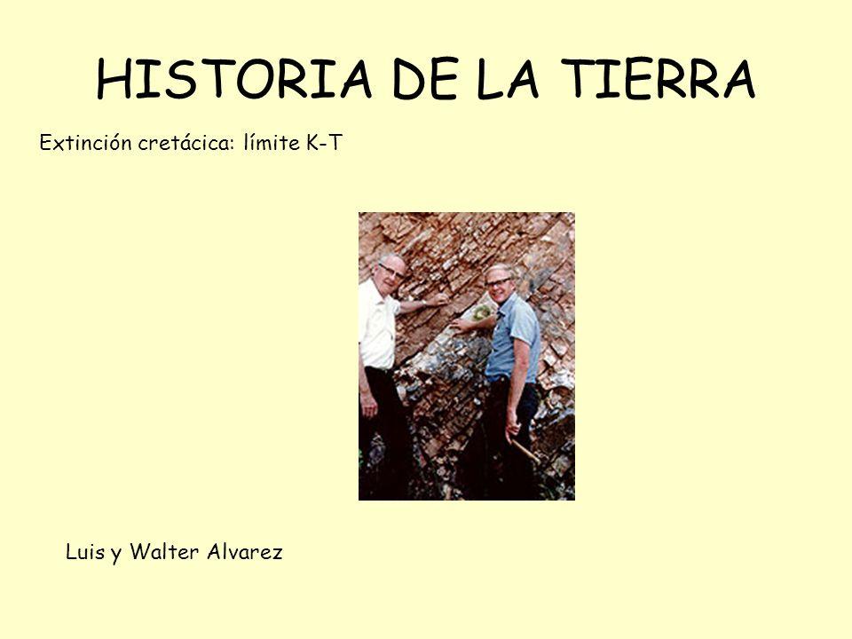 HISTORIA DE LA TIERRA Extinción cretácica: límite K-T
