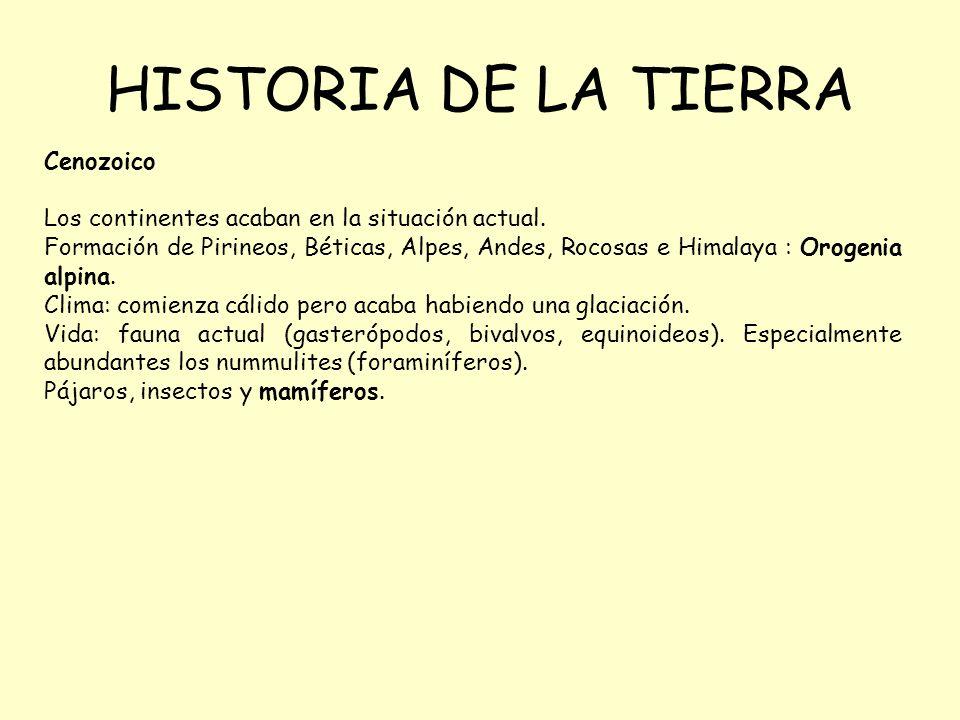 HISTORIA DE LA TIERRA Cenozoico