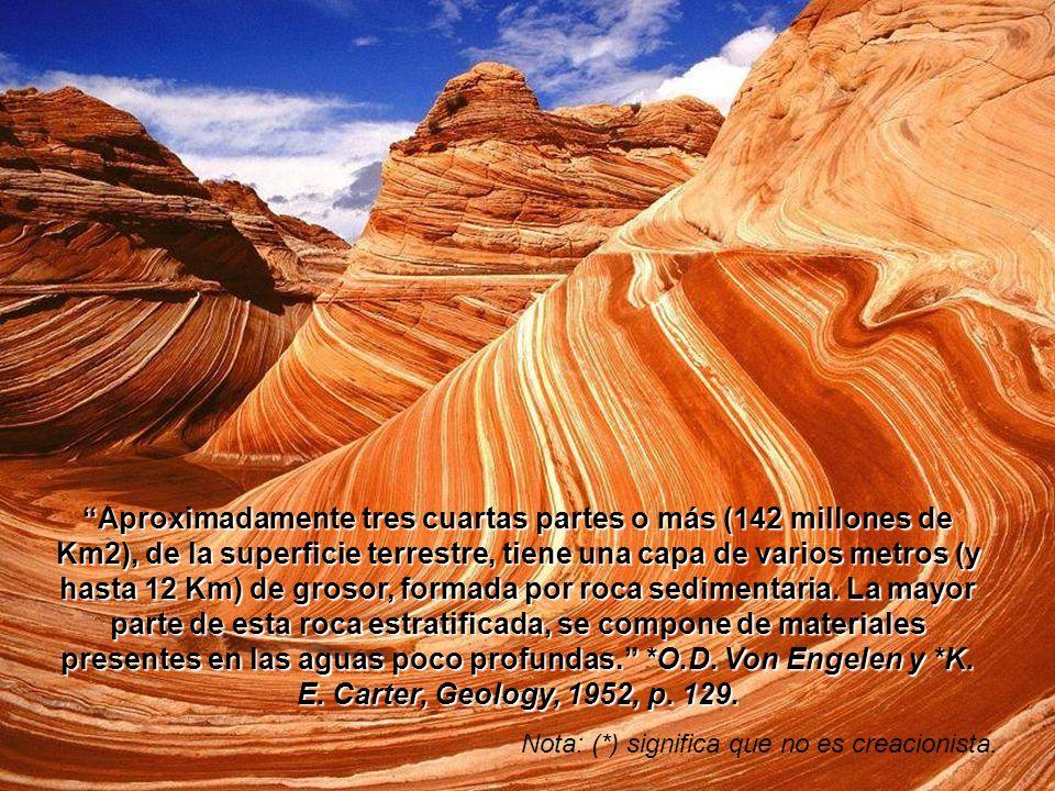 Aproximadamente tres cuartas partes o más (142 millones de Km2), de la superficie terrestre, tiene una capa de varios metros (y hasta 12 Km) de grosor, formada por roca sedimentaria. La mayor parte de esta roca estratificada, se compone de materiales presentes en las aguas poco profundas. *O.D. Von Engelen y *K. E. Carter, Geology, 1952, p. 129.