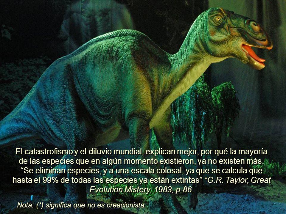 El catastrofismo y el diluvio mundial, explican mejor, por qué la mayoría de las especies que en algún momento existieron, ya no existen más. Se eliminan especies, y a una escala colosal, ya que se calcula que hasta el 99% de todas las especies ya están extintas *G.R. Taylor, Great Evolution Mistery, 1983, p.86.