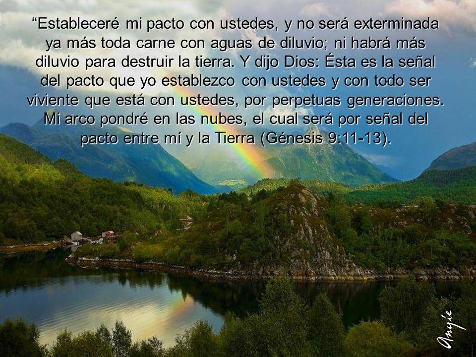 Estableceré mi pacto con ustedes, y no será exterminada ya más toda carne con aguas de diluvio; ni habrá más diluvio para destruir la tierra. Y dijo Dios: Ésta es la señal del pacto que yo establezco con ustedes y con todo ser viviente que está con ustedes, por perpetuas generaciones. Mi arco pondré en las nubes, el cual será por señal del pacto entre mí y la Tierra (Génesis 9:11-13).