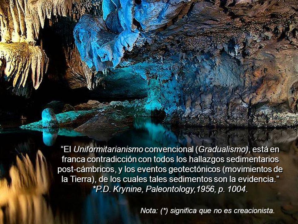 El Uniformitarianismo convencional (Gradualismo), está en franca contradicción con todos los hallazgos sedimentarios post-cámbricos, y los eventos geotectónicos (movimientos de la Tierra), de los cuales tales sedimentos son la evidencia. *P.D. Krynine, Paleontology,1956, p. 1004.